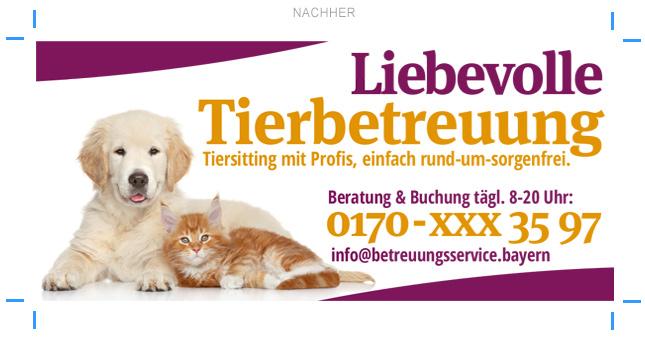 Anzeigengestaltung Tierbetreuung