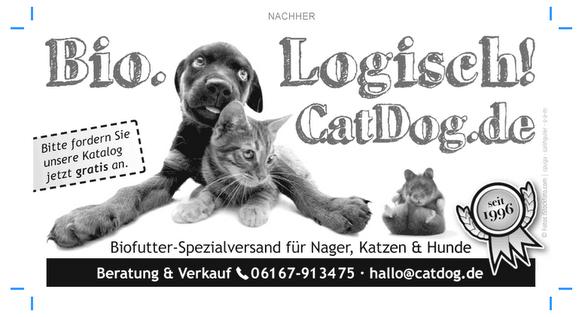 catdog_anzeige_neu